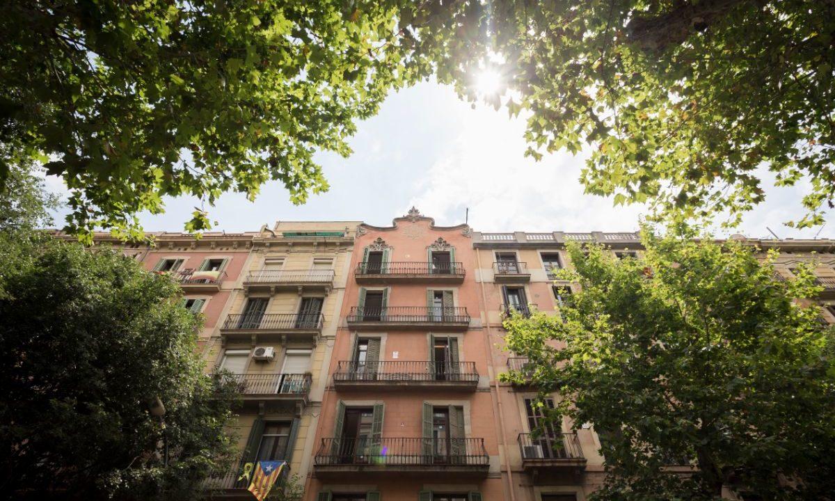 Obra Nueva Barcelona Eixample Esquerra_40